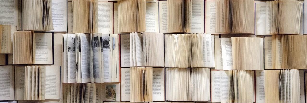 Aktien Buchempfehlungen