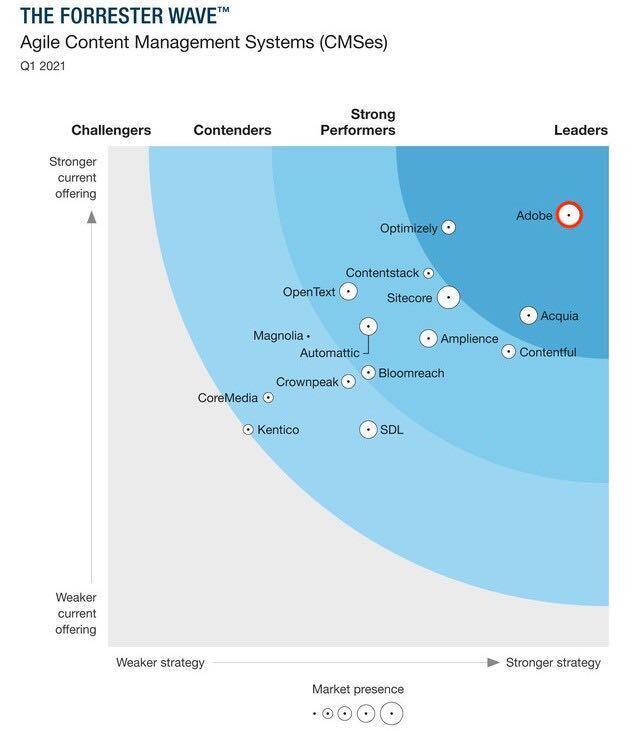 Adobe Systems - Content Management: Strategie und Produktpalette